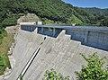 Nyukawa Dam left view.jpg