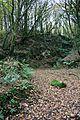 Old Quarry in Trevenna Wood. - geograph.org.uk - 290107.jpg