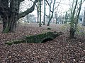 Old water features, Abingdon-on-Thames 04.jpg