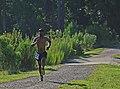 On the stretch (9601416804).jpg