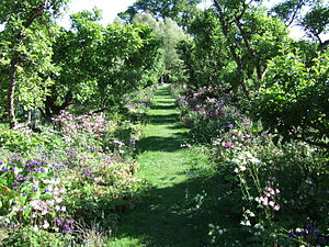 Climate-friendly gardening - Orchard garden showing orchard trees, herbaceous perennials and ground-cover plants, at Hergest Croft Gardens, Herefordshire, Britain.