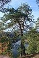 Oslov, pohled na Otavu II.jpg
