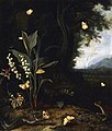 Otto Marseus van Schrieck - A forest floor still-life with flowers and animals.jpg