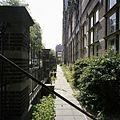 Overzicht van het pad wat loopt tussen de voorgevel van de voorvleugel en het hekwerk aan de voorzijde van de school - 's-Gravenhage - 20387568 - RCE.jpg