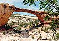 Owachoma Bridge in Utah, 1986.jpeg
