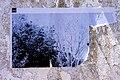 PADRE CRUZ - 1 - 23 (33488145726).jpg