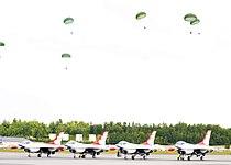 Paratroopertbirds.jpg