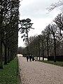 Parc de Sceaux allée de l'Église 1.jpg