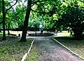 Park Centralny, Brzeg.jpg