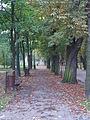 Park Miejski w Kielcach (39) (jw14).JPG