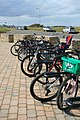 Parked bikes - geograph.org.uk - 1775902.jpg