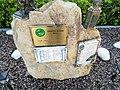 Particolare del Monumento agli Alpini Nolesi caduti - Noli.jpg