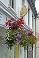 Pasty and Hanging Basket (28768503763).jpg