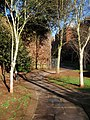 Path beside city walls, Exeter - geograph.org.uk - 1120659.jpg