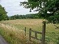 Path crosses road - geograph.org.uk - 1985081.jpg