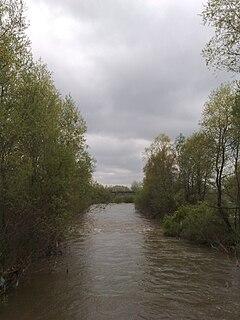 Pčinja (river)