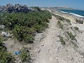 Pembroke, Malta - panoramio (51).jpg
