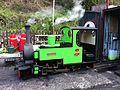 Pendragon on the Rudyard Lake Steam Railway.JPG
