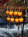 Persimmon drying in Fujinomiya,Shizuoka,Japan(吊るし柿白糸の滝下流) DSCF0010.jpg