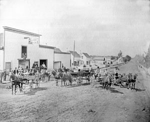 Petaluma, California - B.F. Cox Express Stable in Petaluma (circa 1881-1890)