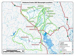 Petaluma River - Petaluma River Watershed 2007 Steelhead Trout Biosurvey