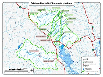 Petaluma River - Petaluma River Watershed 2007 Steelhead Trout Biosurvey
