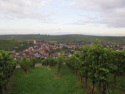 Pfaffenweiler Totalansicht.jpg