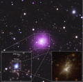 Phoenix cluster - central galaxy.png