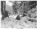 Photographs of American Infantrymen Near Amonines, Belgium - NARA - 12010148.jpg