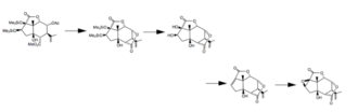 Picrotoxin - The final few steps of the synthesis of picrotoxinin from carvone.