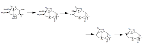 The synthesis of picrotoxinin from carvone