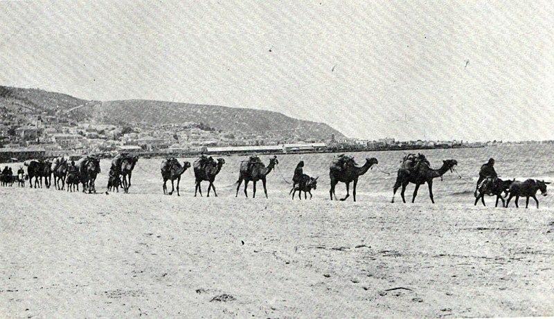 שיירת גמלים - 1912