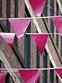 Pink Bunting (7889856472).jpg