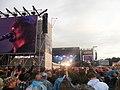 Pinkpop 2011 - Foo Fighters.jpg