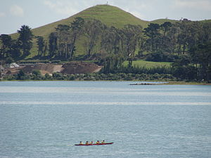 Puketutu Island - Image: Pinnacle Hill on Puketutu Island