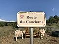 Plaque Route Couchant - Coligny (FR01) - 2020-09-15 - 1.jpg