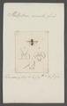 Platystoma - Print - Iconographia Zoologica - Special Collections University of Amsterdam - UBAINV0274 039 07 0045.tif