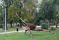 Pleszew City Park III.jpg