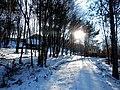 Podhradík sneh 18 Slovakia 4.jpg
