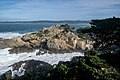 Point Lobos State Natural Reserve 1 18 19 (46099814034).jpg