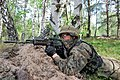 Polish-Ukrainian combined unit conducts tactical training in defence and counterattack (27506016751).jpg