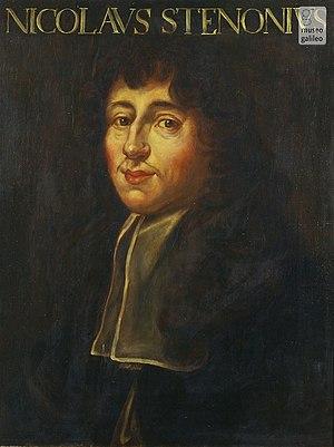 Nicolas Steno - Image: Portrait of Nicolas Stenonus