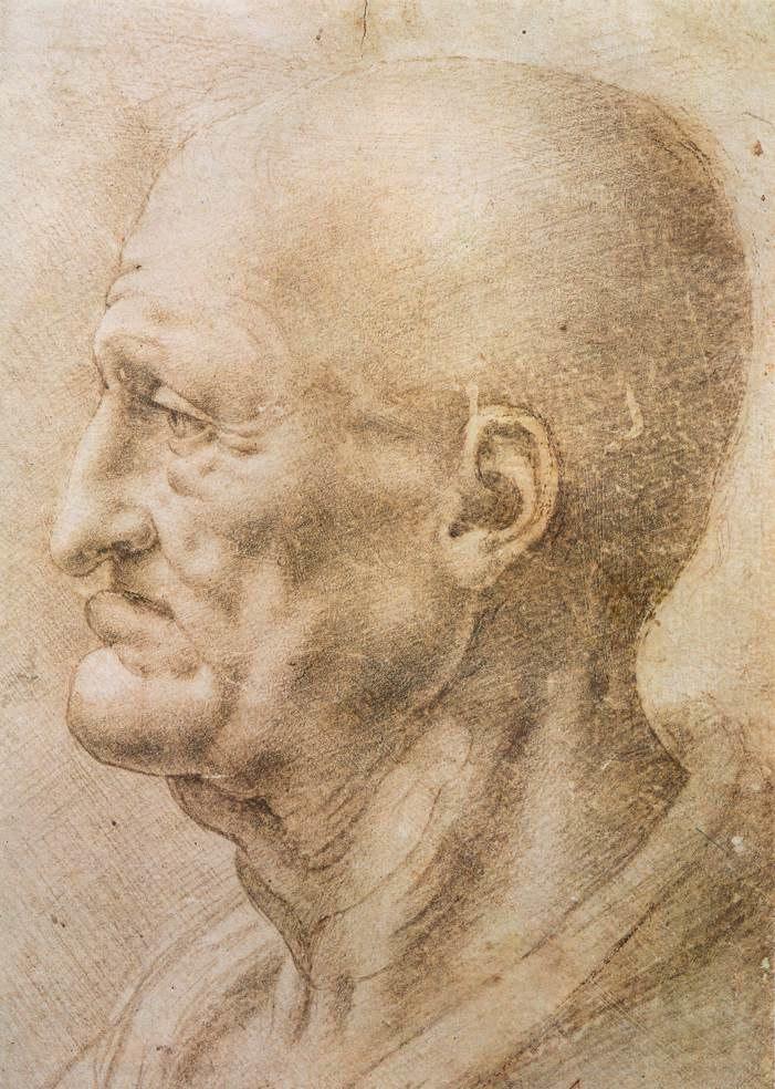 Portrait of an old man by da Vinci