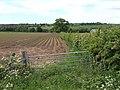 Potato field by the B4373 - geograph.org.uk - 441120.jpg
