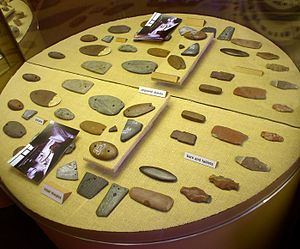 Paleo-Indians - Atlatl weights and carved stone gorgets from Poverty Point.