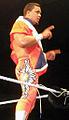 Primo WWE.jpg