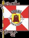 Flag of Guarda