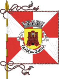 Bandeira de Guarda