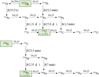 Plutonium wikipedia a diagram illustrating the interconversions between various isotopes of uranium thorium protactinium and plutonium urtaz Gallery