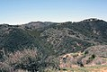 Puerco Canyon-north (18912972549).jpg